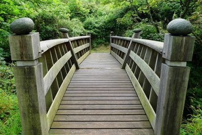 bridge to creating a commercially minded service team