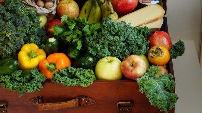 fruit and veg case study